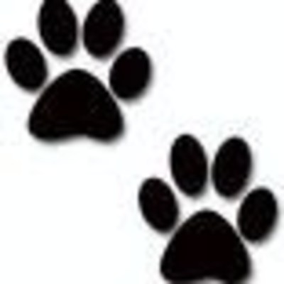 Paw Prints For Huge!